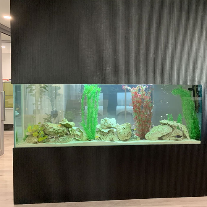 ALS Maintenance Services - Custom Aquarium