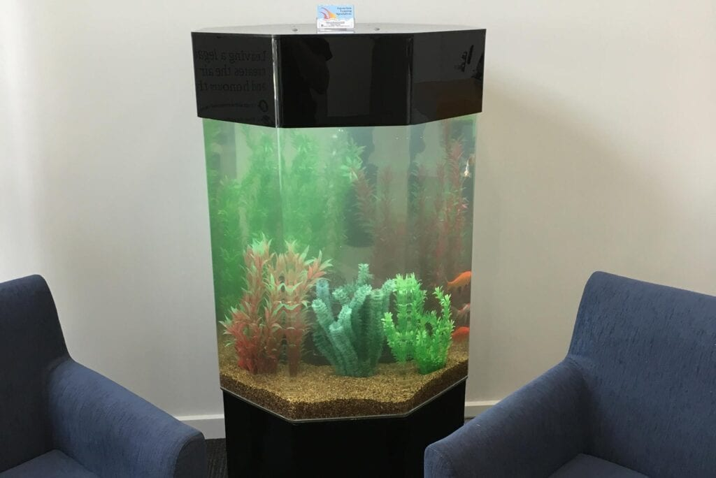 Octagonal Rental Aquarium